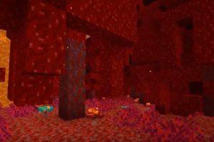 Forêt de verrue du Nether : Variante rouge