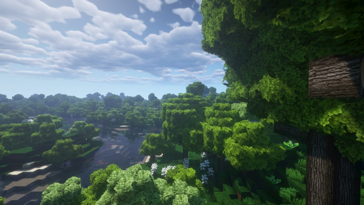 LB Photo Realism Resource Pack Minecraft foret shaders 2