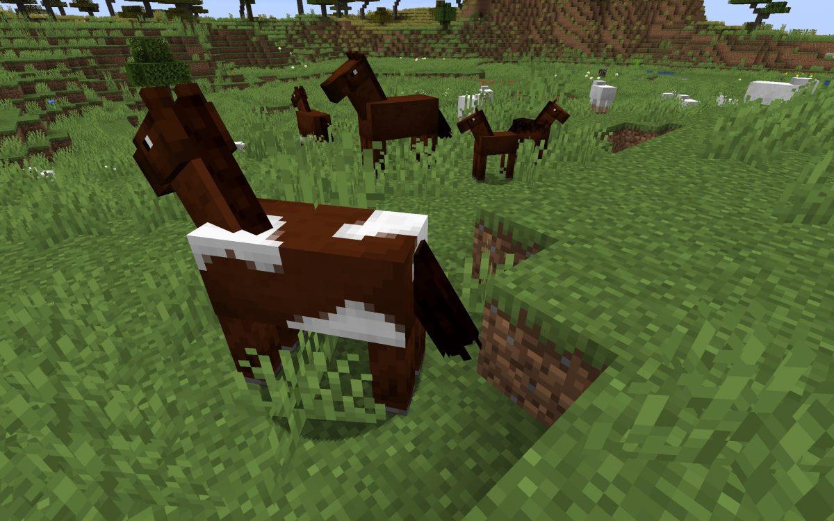 Meilleur Seed Minecraft 1.14 : Ferme chevaux