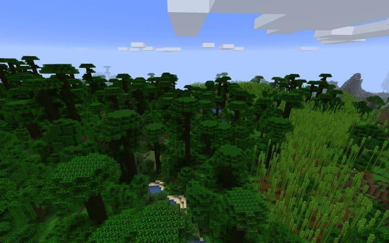 Meilleur Seed Minecraft 1.14 : Foret de bambous et plage et jungle