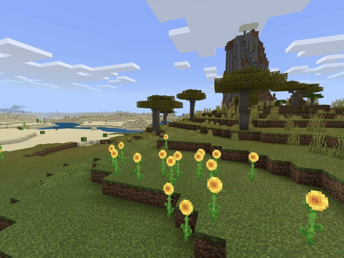 Seed et Graines pour Minecraft Bedrock 1.12 : Gros butin désert plaine fleur