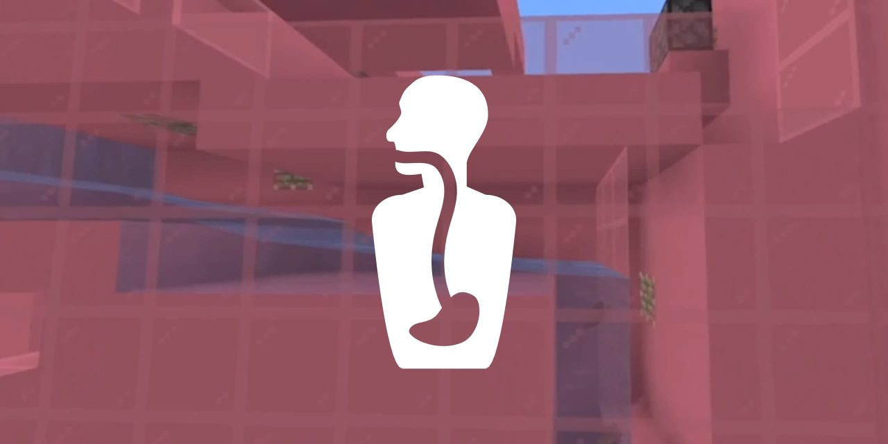 Le système digestif du corps humain dans Minecraft