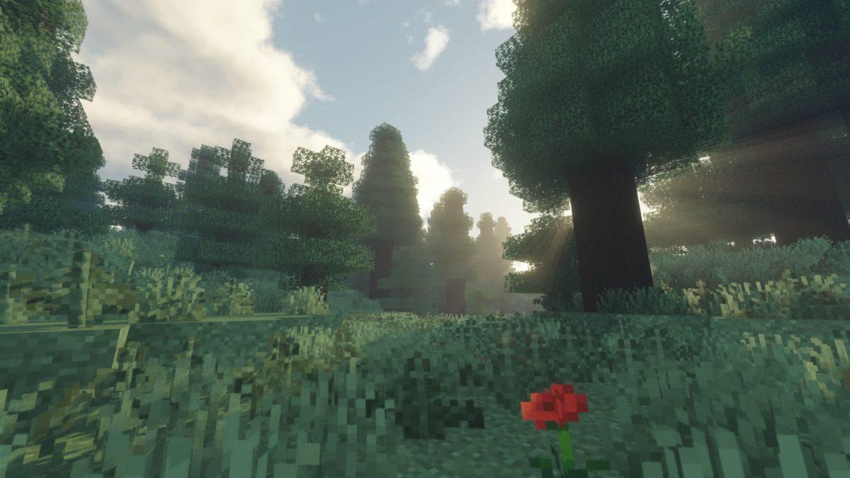 Voyager Shader Minecraft : Une rose dans la forêt