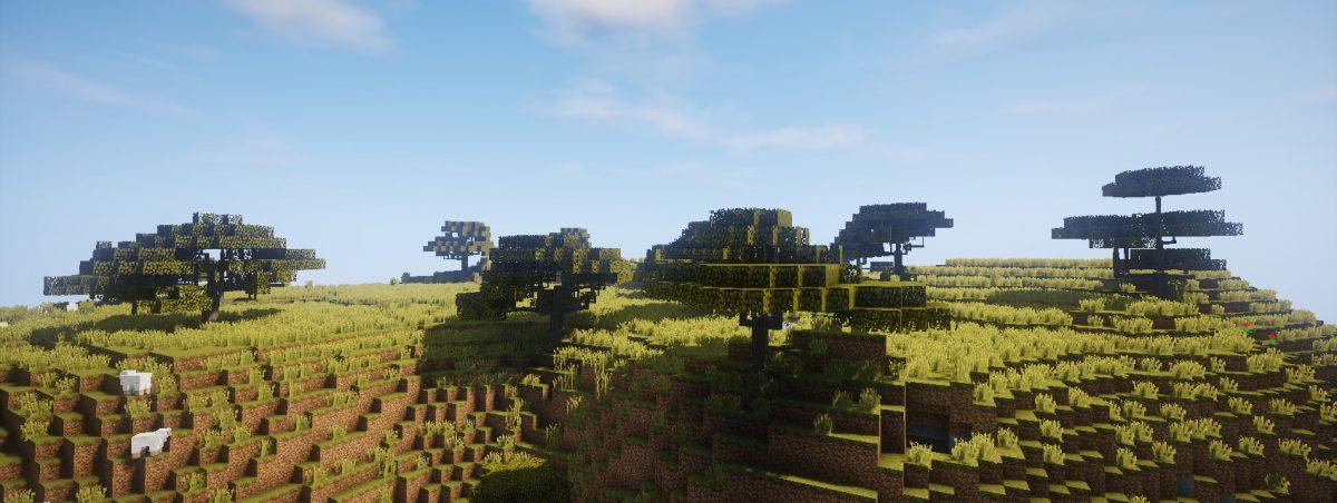 Dynamic Trees : une savane peu peuplée d'acacias