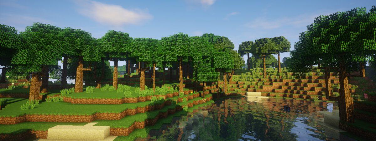 Dynamic Trees : à la lisière d'une forêt de chênes