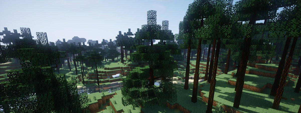 Dynamic Trees : forêt d'épicéas