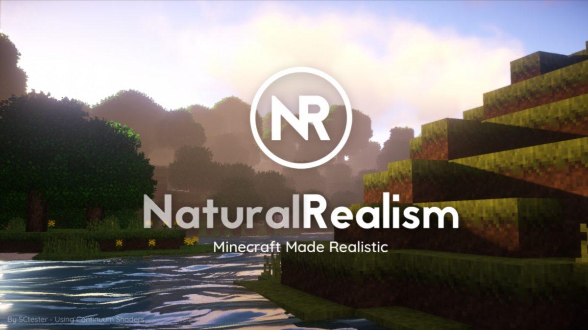 Pack de Textures NaturalRealism - 1.12 → 1.14 • Minecraft.fr