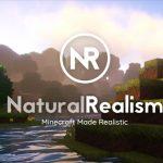 [Pack de Textures] NaturalRealism – 1.12 → 1.14