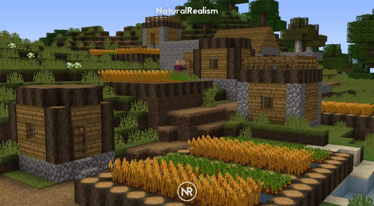 [Pack de Textures] NaturalRealism : Un village avec une plantation de carottes