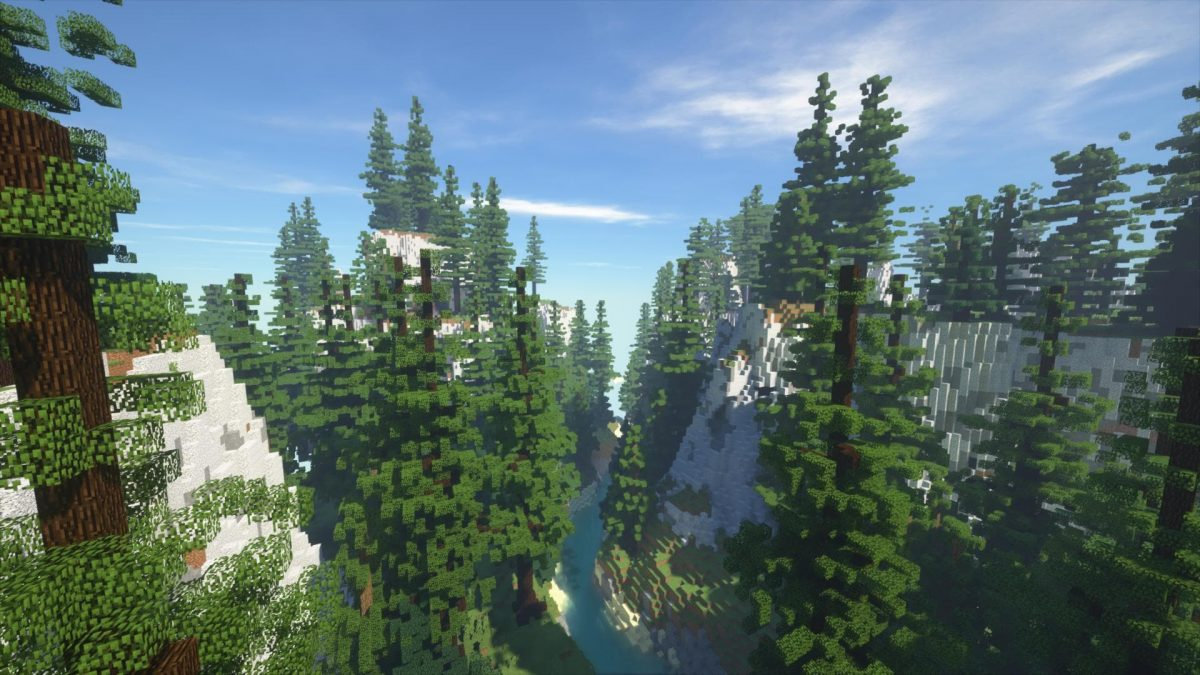 Villager's Valley : une partie de la foret