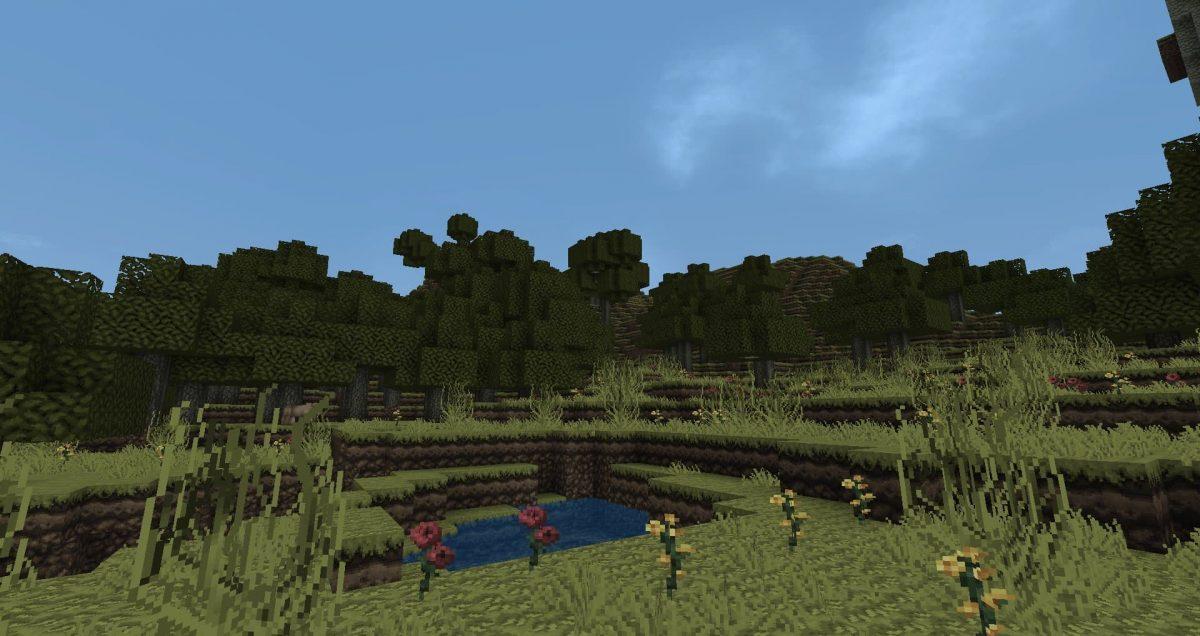 Dokucraft Dark : un lac entouré d'herbe et de verdure