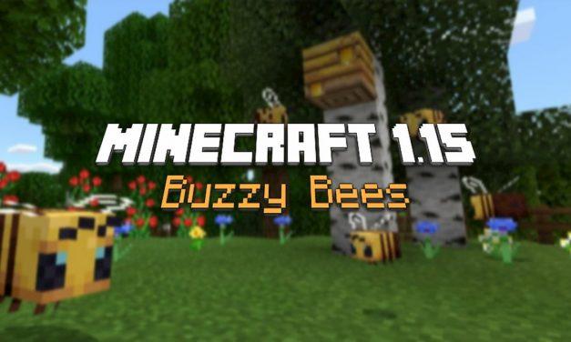 Mise à jour : Minecraft 1.15 «Buzzy Bees»