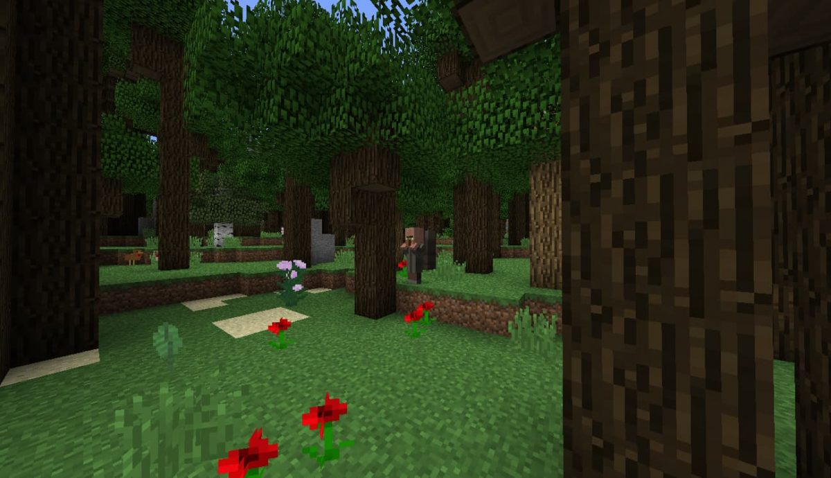 Modpack Roguelike Adventures and Dungeons : Foret