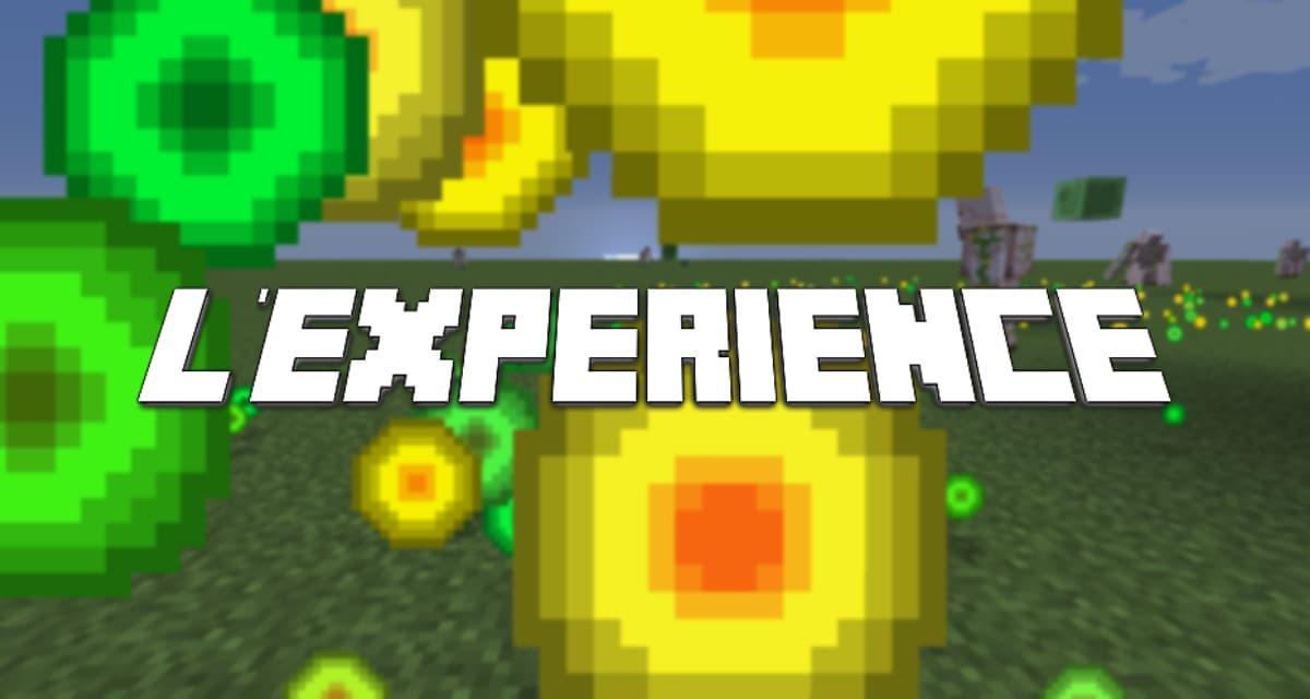 expérience minecraft