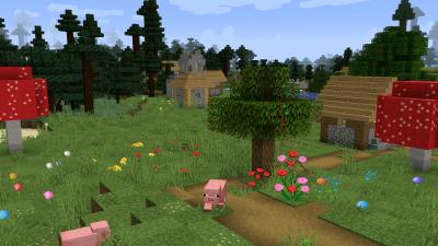 Faithful Alternative Addon : village