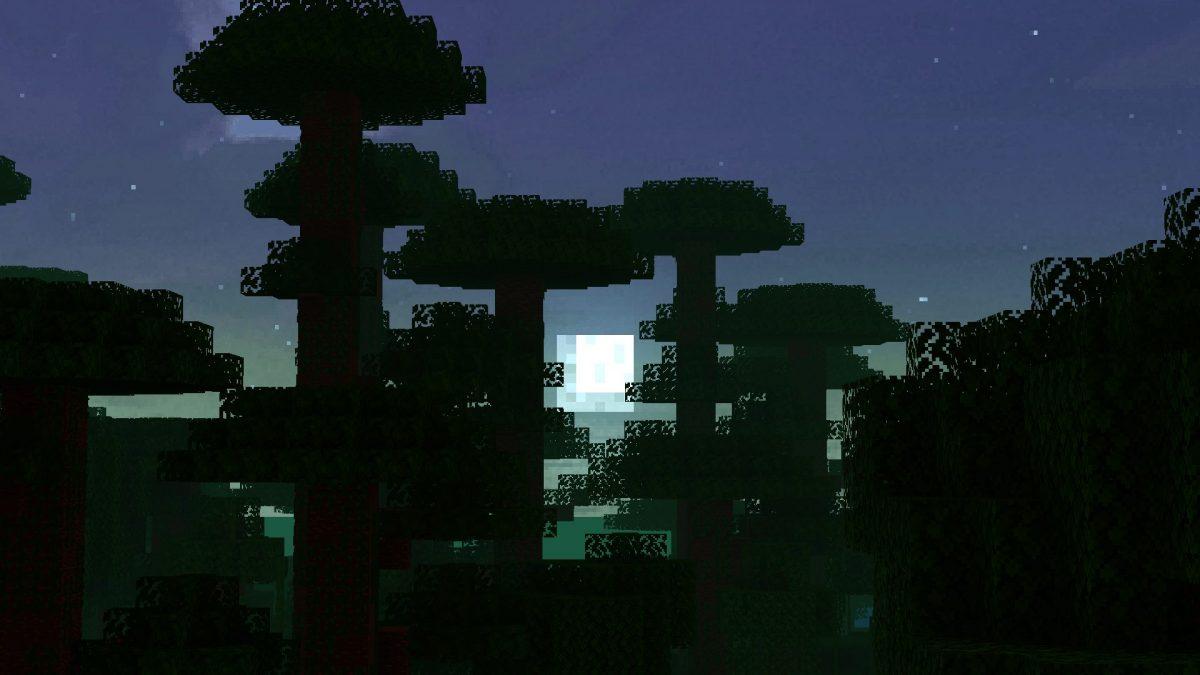 New Default + : une forêt