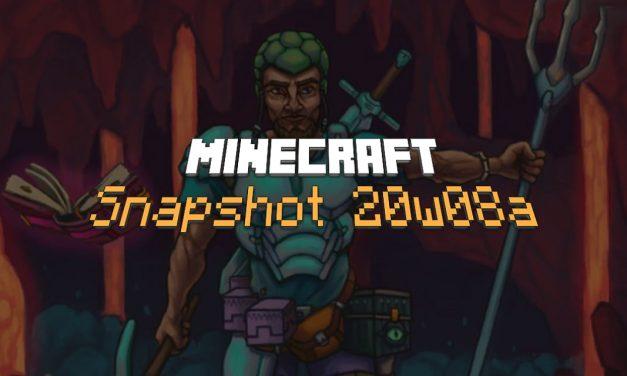 Snapshot 20w08a : Minecraft 1.16