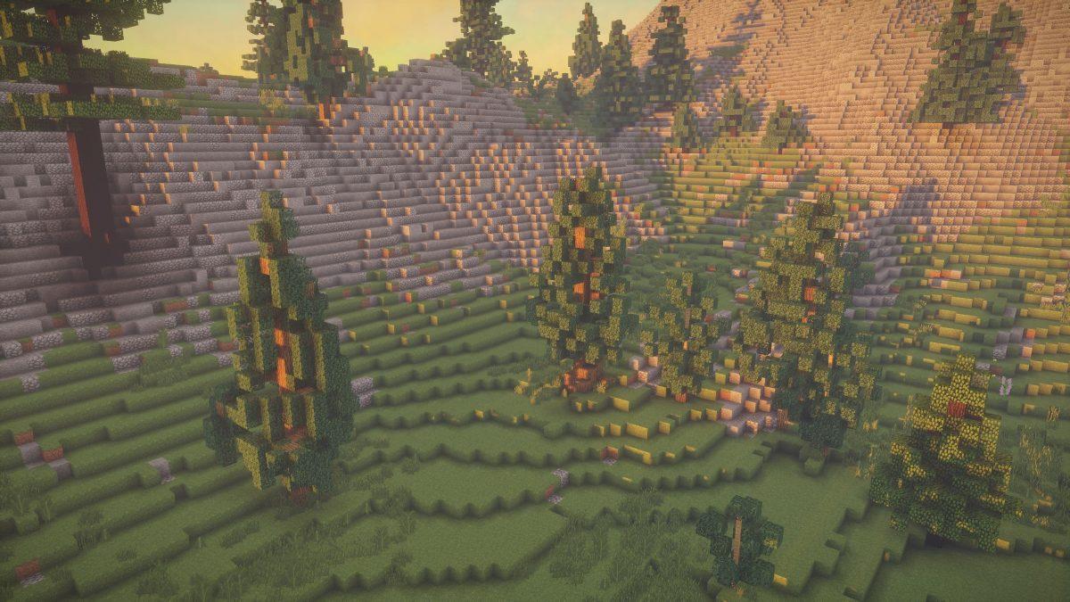 UShader : Une colline avec des arbres et du gravier
