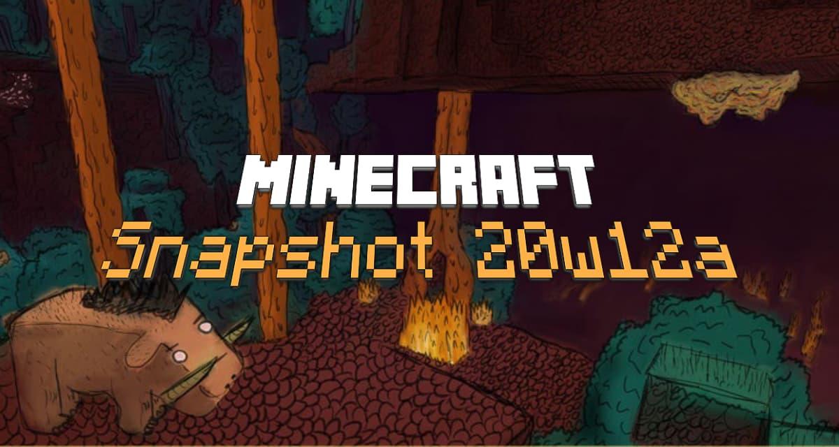 Snapshot 20w12a : Minecraft 1.16
