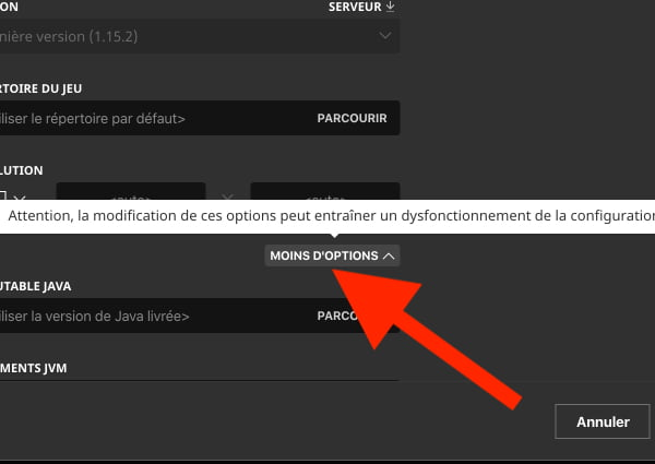 "Allouer plus de ram à Minecraft : cliquez sur le bouton ""plus d'options"""