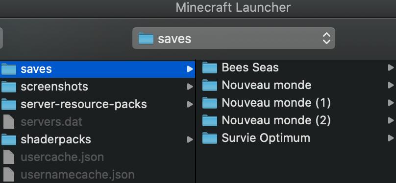 Installer Map Minecraft : Dossier saves