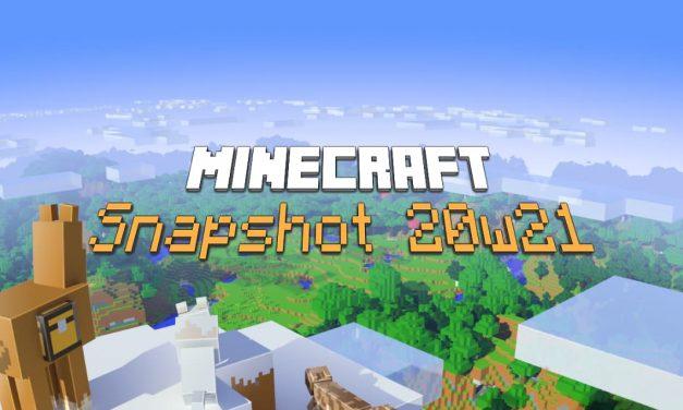 Snapshot 20w21a : Minecraft 1.16