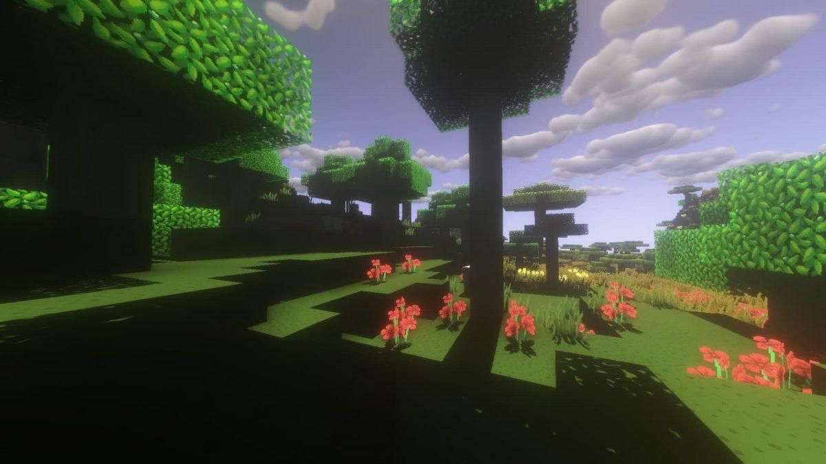 Dragon Dance Pack : une plaine avec des ombres