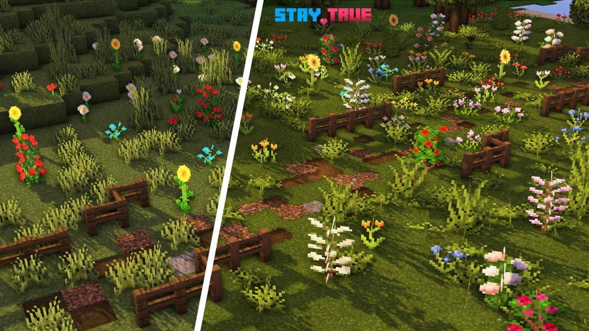 Stay True : des fleurs dans un chmaps