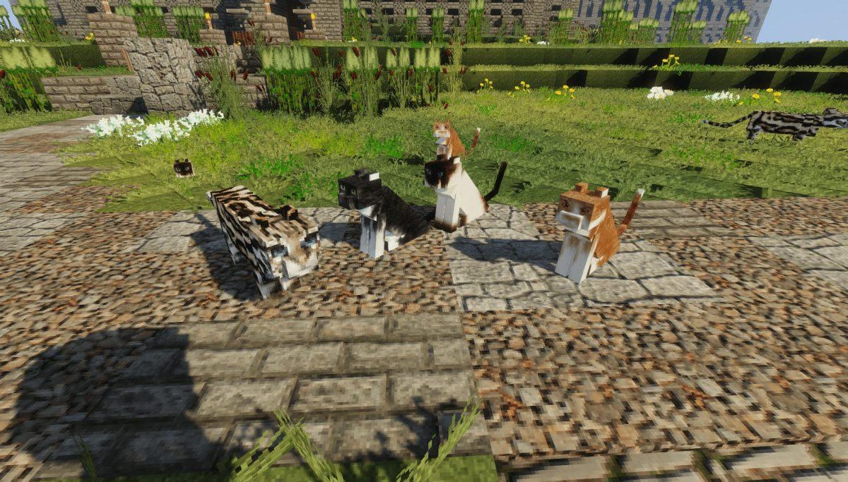 Pack de Texture Winthor Medieval : chat et ocelot
