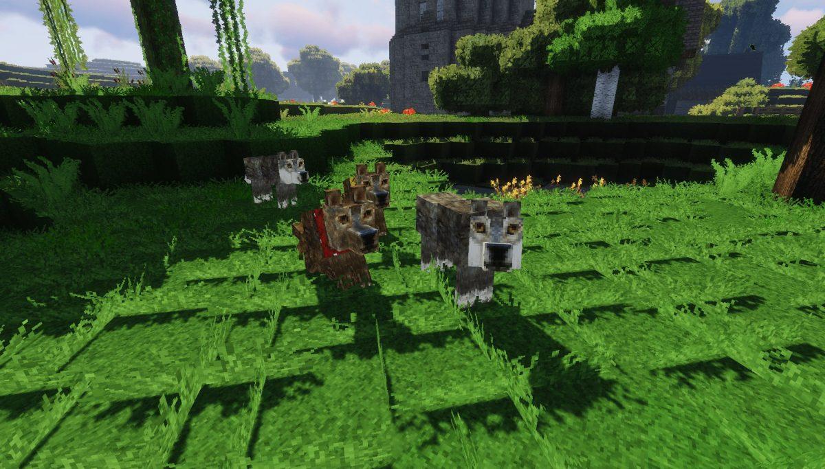 Pack de Texture Winthor Medieval : chien et loup