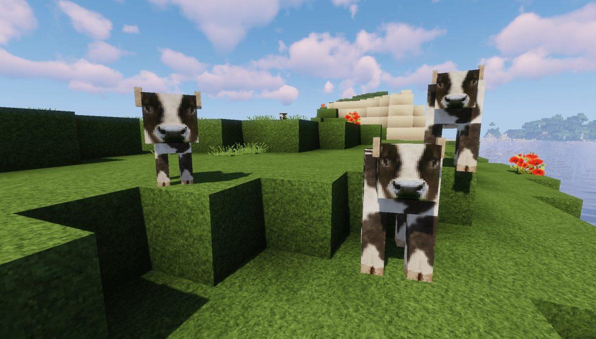 Pack de Texture Winthor Medieval : des vaches