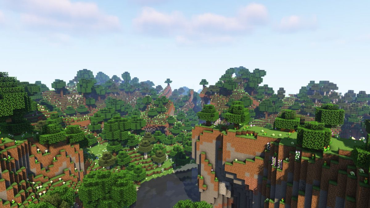 Une forêt ainsi que de nombreux arbres