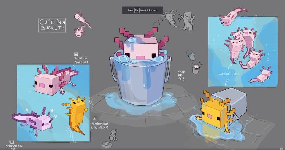 Concept art de l'Axolotl
