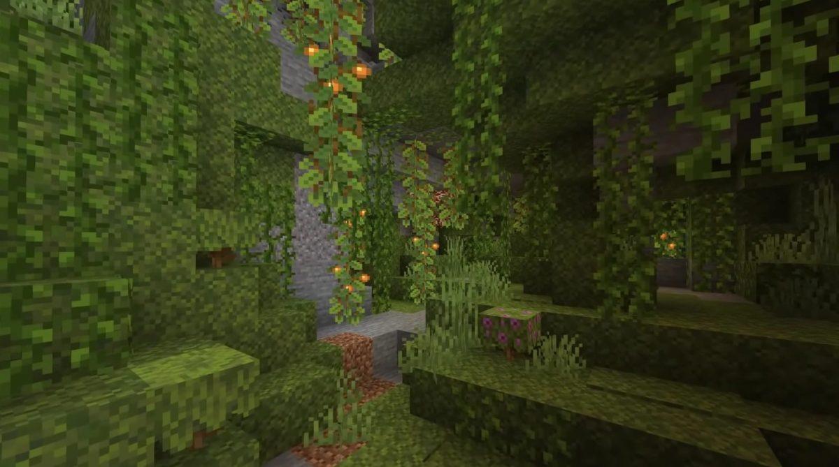 Le biome de caverne luxuriante