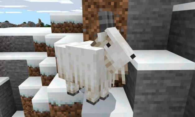 Essayez en avant-première la mise à jour 1.17 sur Minecraft Bedrock Edition