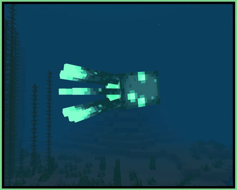 La pieuvre lumineuse