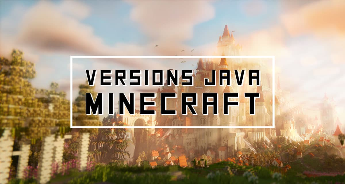 version java minecraft