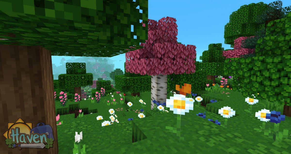 Haven texture pack : papillons