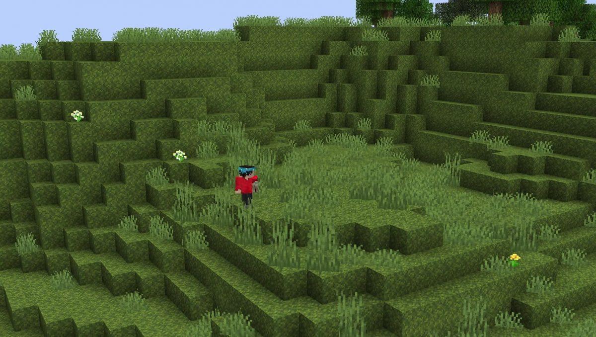 Minecraft 1.17 décoration : mousse dans les jardins