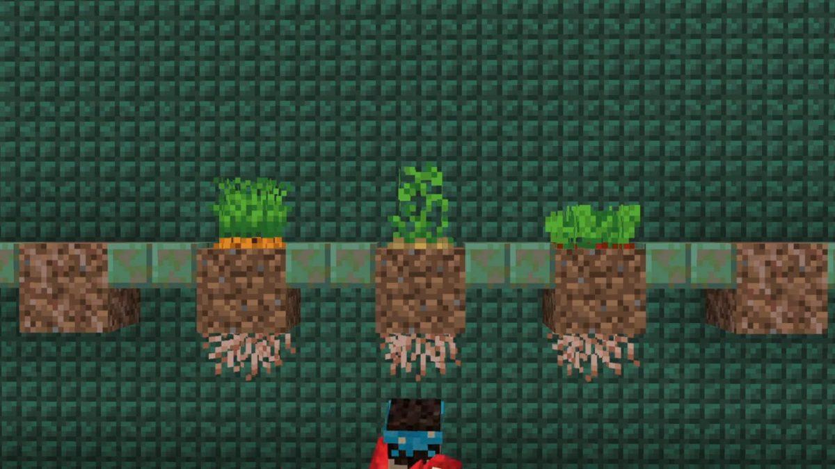 Minecraft 1.17 décoration : racines