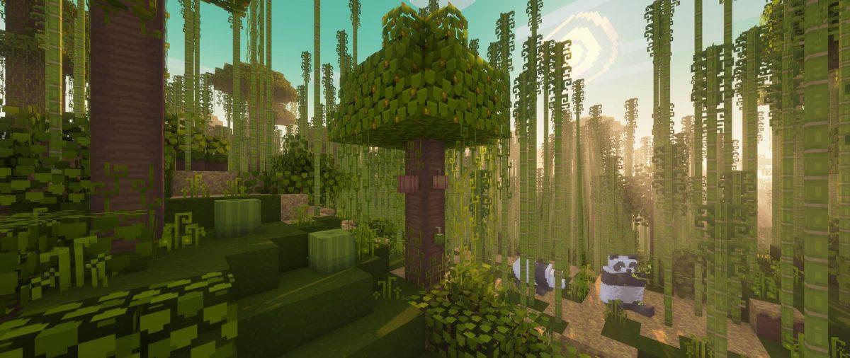 Jungle de bambous et pandas avec le pack Dandelion X