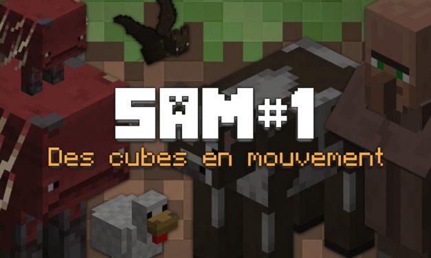 SAM#1 – Des cubes en mouvement