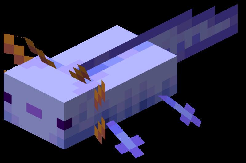 axolotl bleu minecraft rare