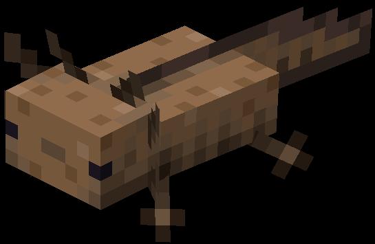 axolotl brun minecraft