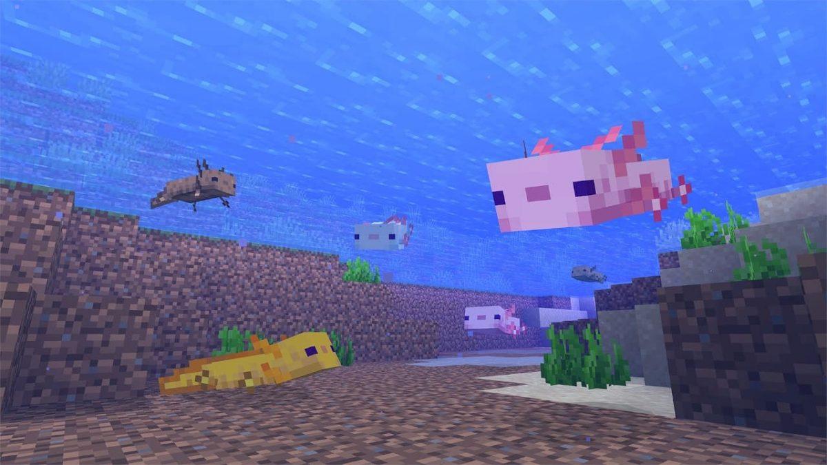 axolotl minecraft