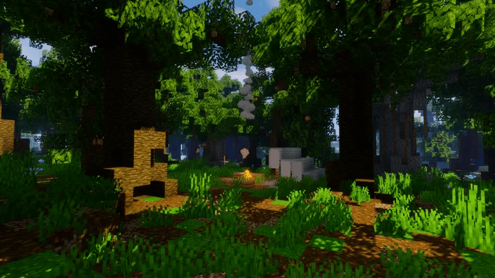 Campement en forêt