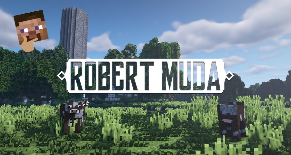 Un grand-père se lance sur Minecraft !
