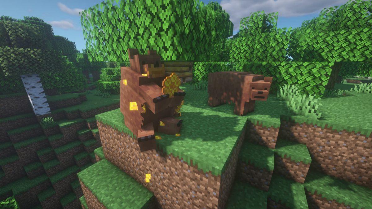 Des grizzlis mangeant du miel.