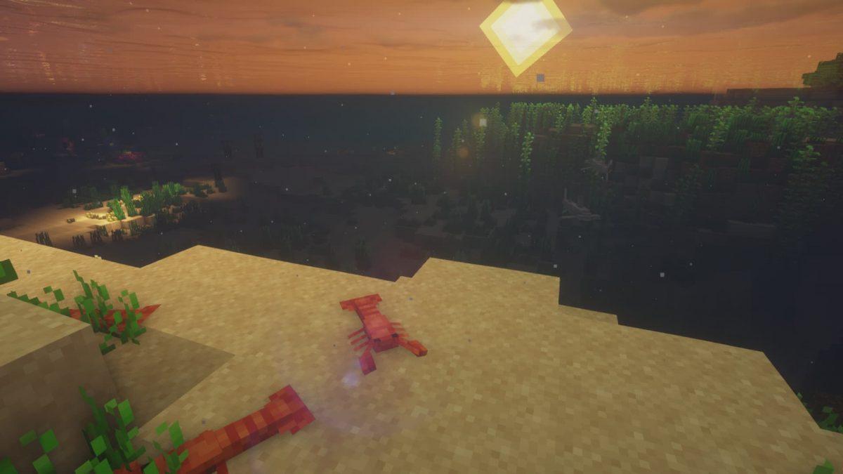 des homards sur les fonds marins.