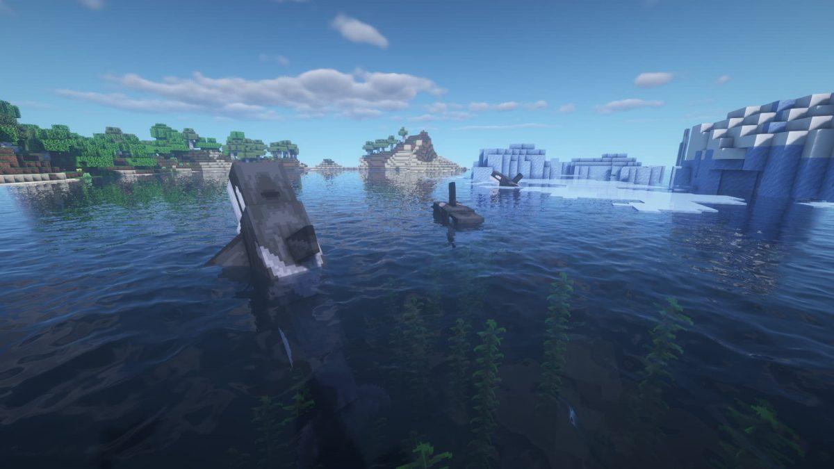 un groupe d'orques errant dans les océans gelés.